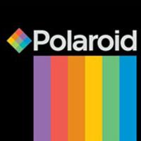 Polaroid-.jpg